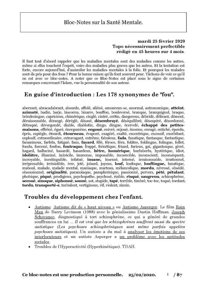 Bloc-Notes Troubles Mentaux par Sami 25 février 2020_Page_01