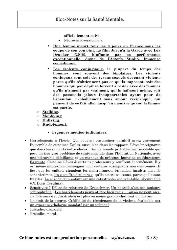 Bloc-Notes Troubles Mentaux par Sami 25 février 2020_Page_43